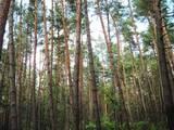 Земля и участки Львовская область, цена 114000 Грн., Фото
