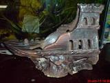 Рибки, акваріуми Водні рослини, ціна 3 Грн., Фото