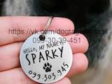 Собаки, щенята Аксесуари, ціна 120 Грн., Фото