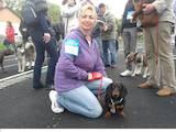 Собаки, щенки Гладкошерстная такса, цена 3000 Грн., Фото