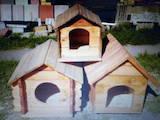 Собаки, щенки Аксессуары, цена 500 Грн., Фото