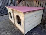 Собаки, щенята Аксесуари, ціна 500 Грн., Фото