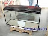 Рибки, акваріуми Акваріуми і устаткування, ціна 2400 Грн., Фото