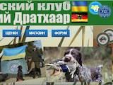 Собаки, щенки Немецкая жесткошерстная легавая, цена 15000 Грн., Фото