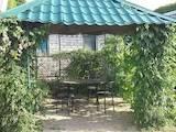 Дома, хозяйства Запорожская область, цена 1500 Грн./день, Фото
