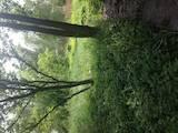 Дачи и огороды Киевская область, цена 2000 Грн./мес., Фото