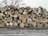 Дрова, брикети, гранули Дрова, ціна 1050 Грн., Фото