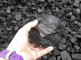 Дрова, брикети, гранули Вугілля, ціна 3150 Грн., Фото