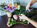 Курси, освіта Курси флористів, ціна 3200 Грн., Фото