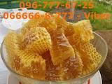 Продовольство Мед, ціна 120 Грн./кг., Фото