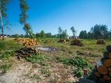 Земля і ділянки Київська область, ціна 291600 Грн., Фото