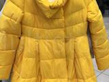 Жіночий одяг Пуховики, ціна 599 Грн., Фото