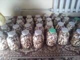 Продовольство Гриби, ціна 330 Грн./шт., Фото