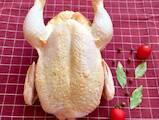 Продовольство М'ясо птиці, ціна 75 Грн./кг., Фото