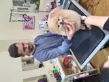 Курси, освіта Курси перукарів, ціна 6000 Грн., Фото