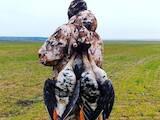 Охота, рибалка Одяг для полювання і рибалки, ціна 1500 Грн., Фото